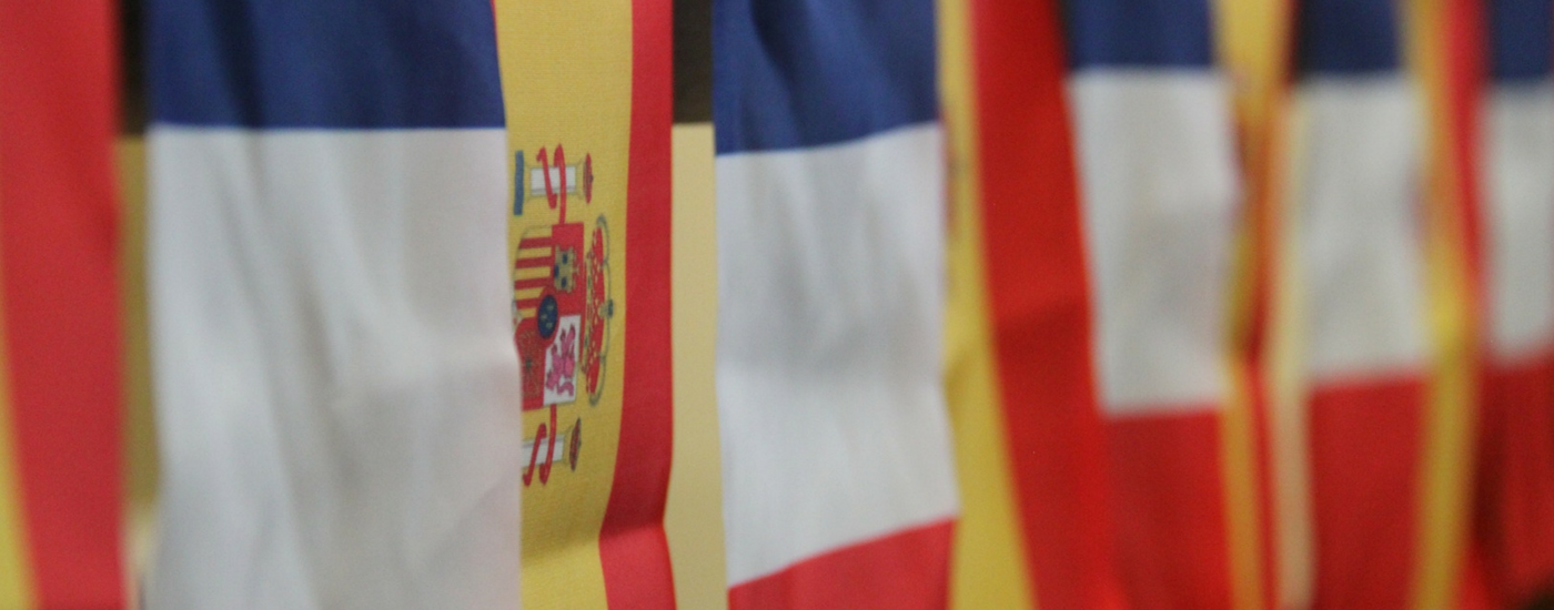YOUR OWN FRENCH AND SPANISH LEARNING EXPERIENCE IN SYDNEY